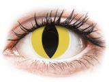 alensa.fi - Piilolinssit - Keltaiset Cat Eye linssit - ColourVue Crazy
