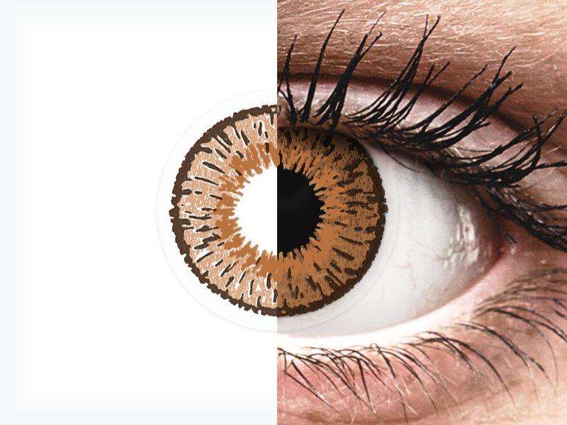 Pähkinä piilolinssit - Expressions Colors (1 linssi)