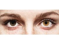 Ruskeat Hazel linssit - FreshLook Colors - Tehoilla (2 kpl)